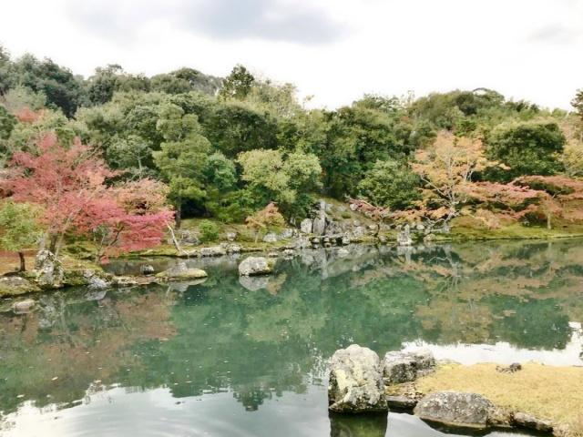 京都 嵐山 (14)