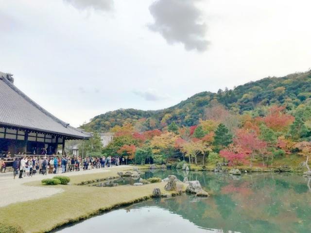 京都 嵐山 (15)