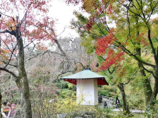 京都 嵐山 (16)