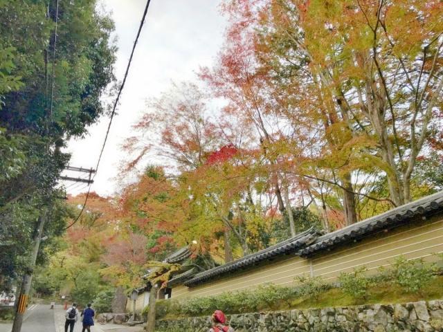 京都 嵐山 (19)