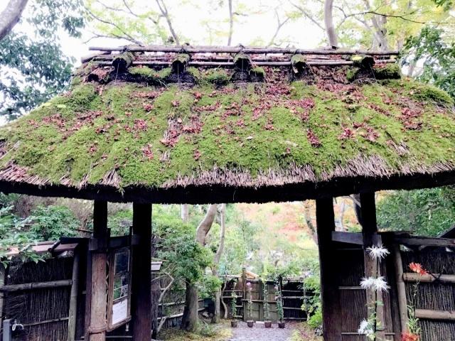 京都 嵐山 (26)