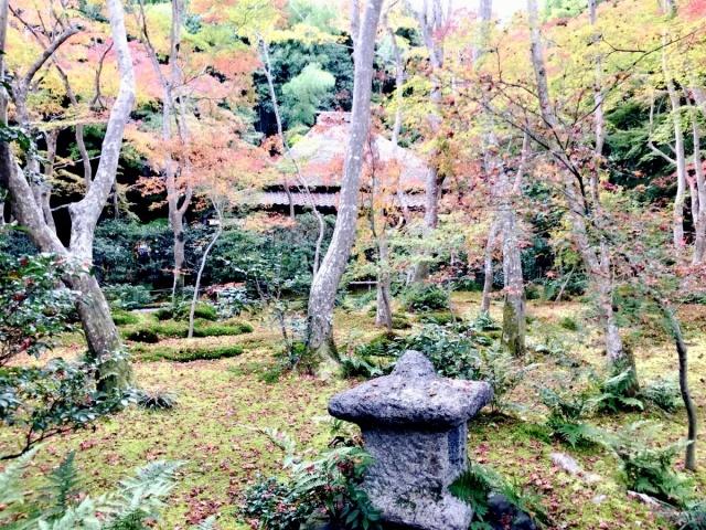 京都 嵐山 (29)