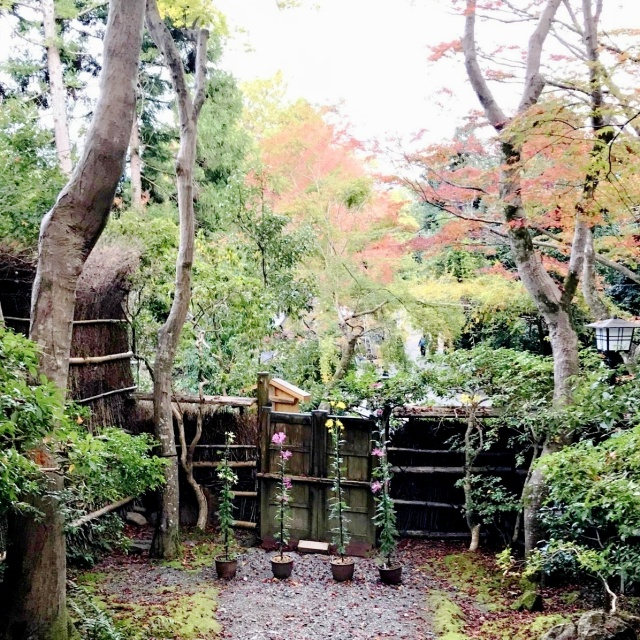 京都 嵐山 (28)