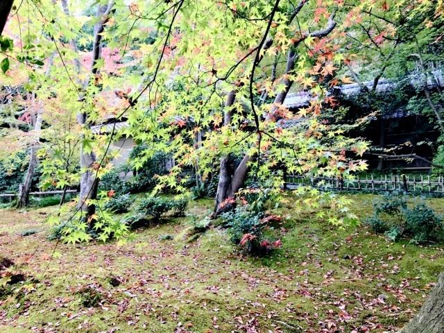京都 嵐山 (30)