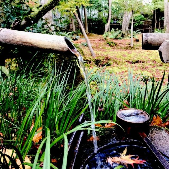 京都 嵐山 (34)