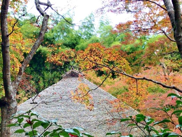 京都 嵐山 (36)