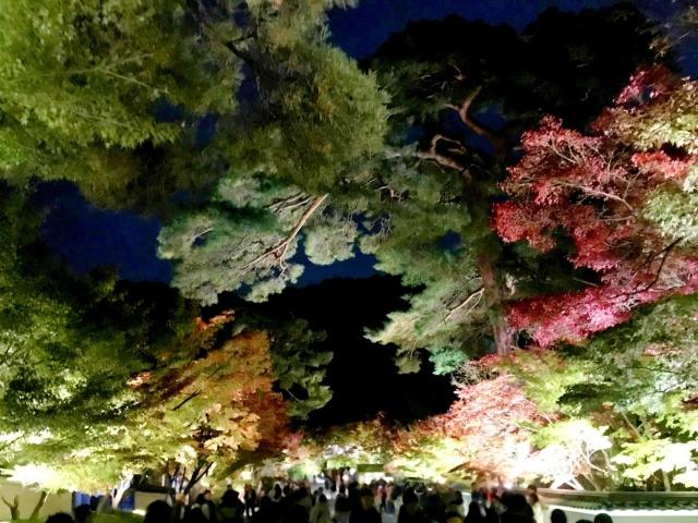 京都市左京区 (2)