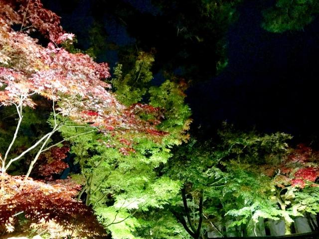 京都市左京区 (3)