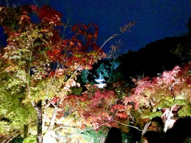 京都市左京区 (9)