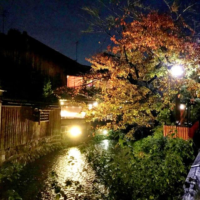 京都市左京区 (16)