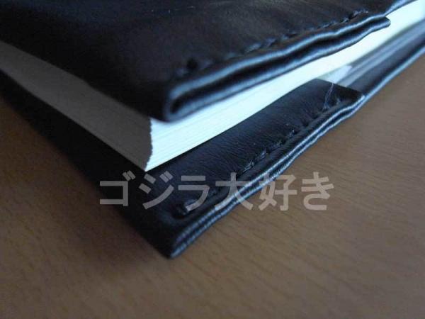 GX0020351.jpg