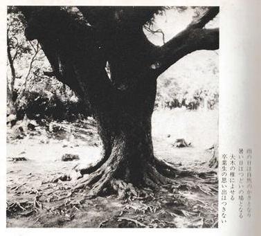 波浮小100年記念-page2
