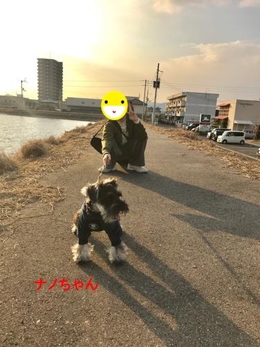 ナノちゃん2019年2月17日
