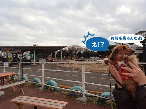 irumi36.jpg