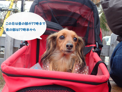 irumi40.jpg