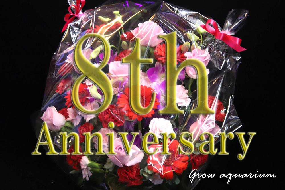 8周年ありがとうございます!