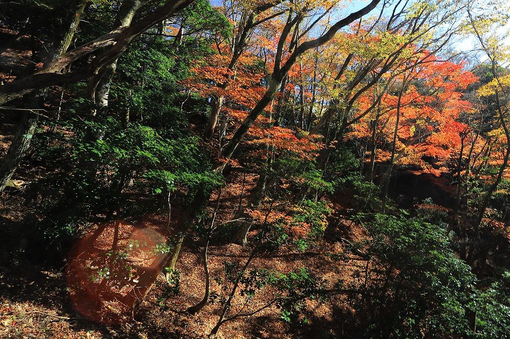 英彦山IMG_1586