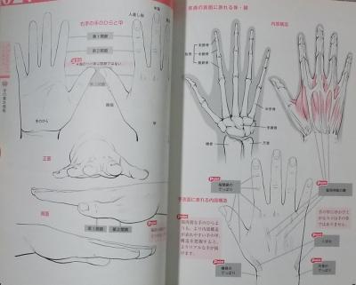 キャラクターの手と足の描き方 (6)
