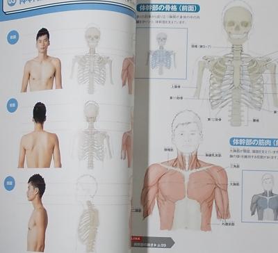 人体の描き方マスターブック (2)