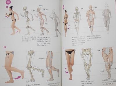 人体の描き方マスターブック (5)