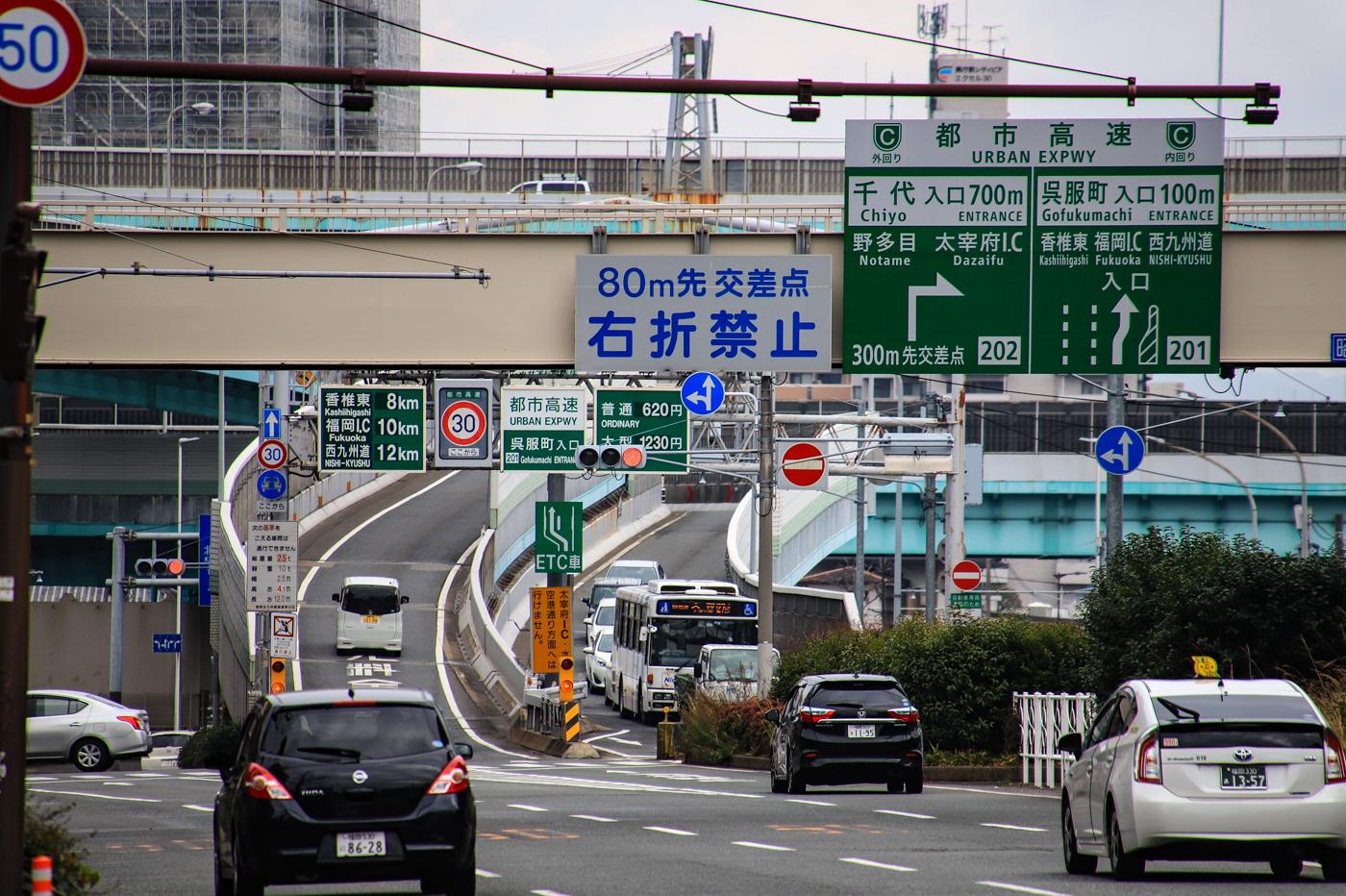 shikashima-2.jpg