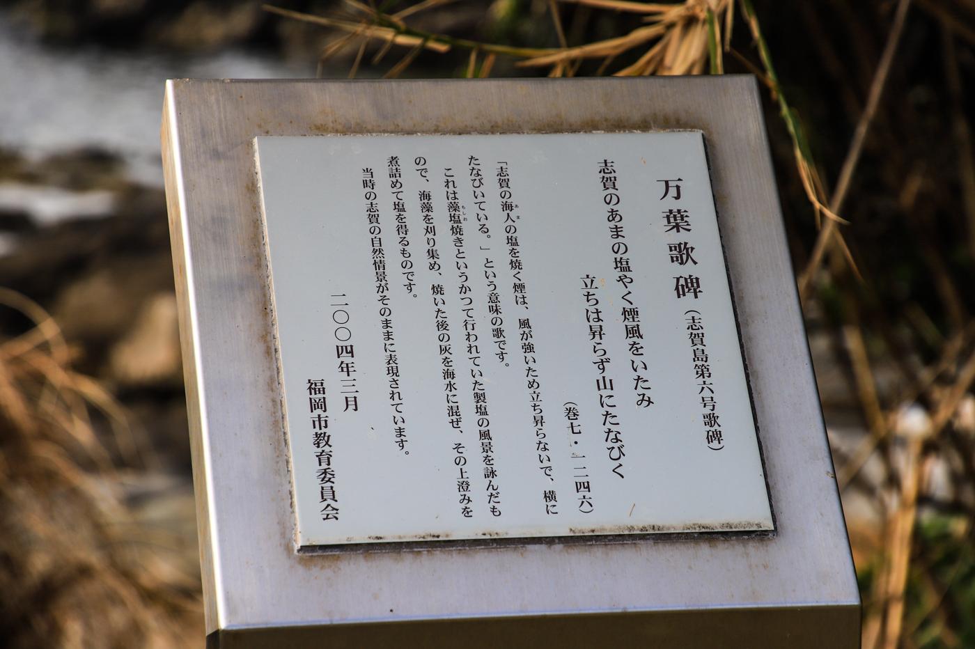 shikashima-20.jpg