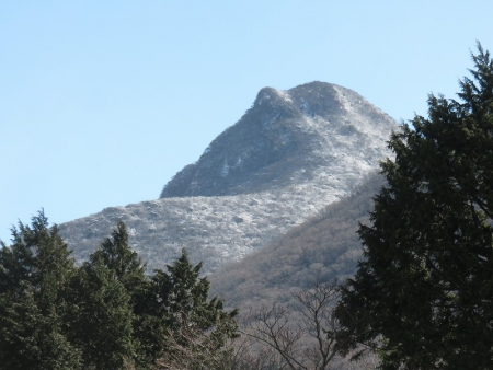箱根のクマ VC190308