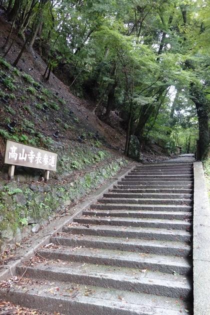kyoto23_201811130406418c5.jpg