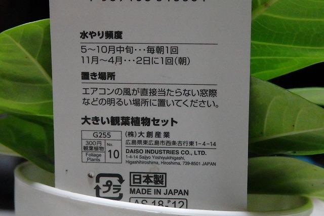 PC160028.jpg