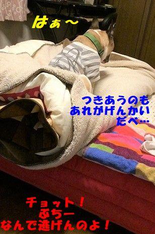 IMG_5585.jpg