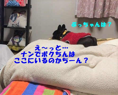 IMG_5800.jpg