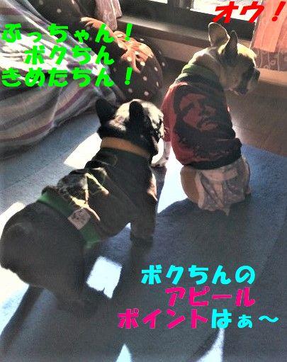IMG_6092.jpg
