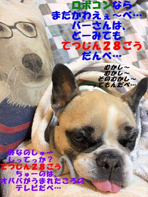 IMG_6331.jpg