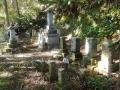 蕨岡 桑原墓