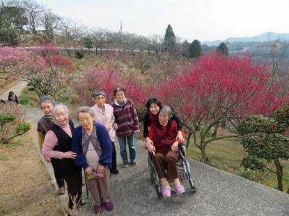 梅の花見1