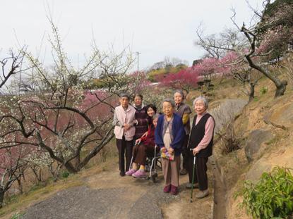梅の花見5