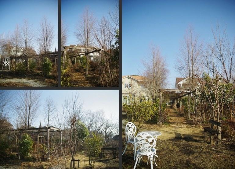 IMGP0887-horz-vert-horz.jpg