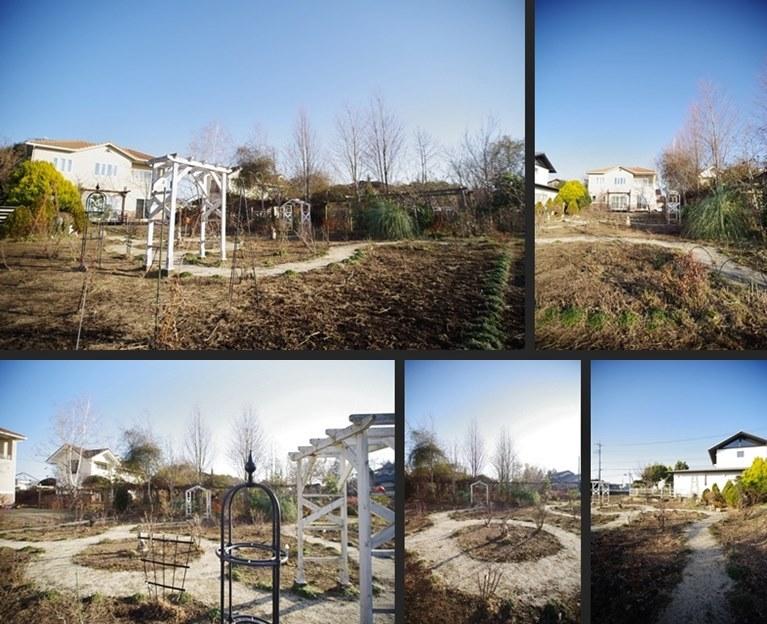 IMGP4673-horz-vert.jpg