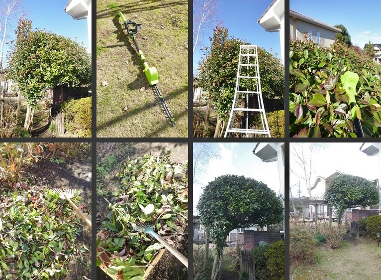 P2420043-horz-vert.jpg