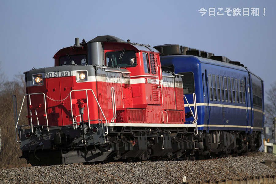 _MG38748.jpg