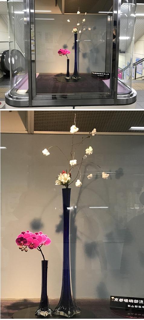 20181107駅の生花11