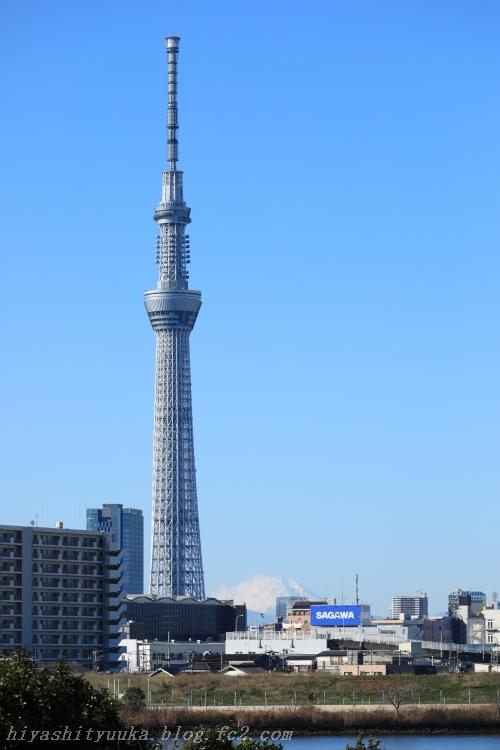 5Z2A3408 富士山&スカイツリーSN