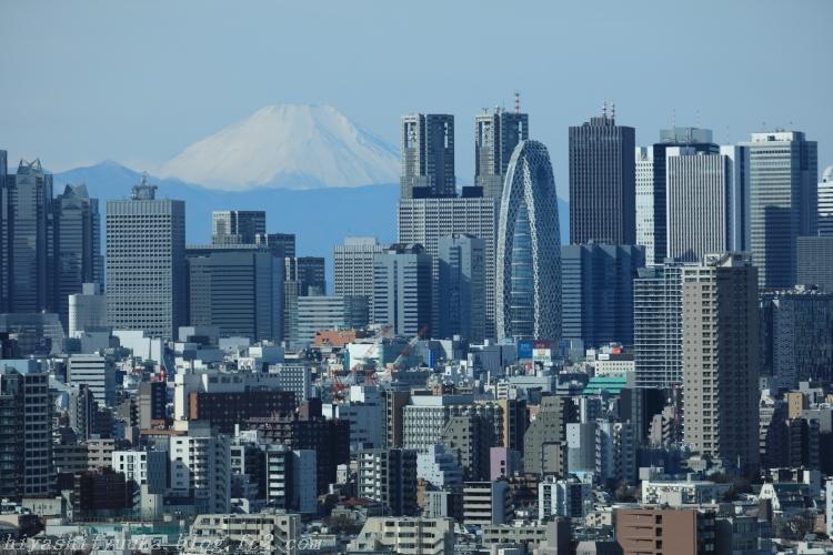 5Z2A4288 富士山SN