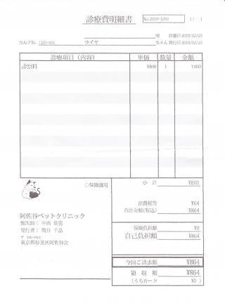 ライヤ診療費明細書190223