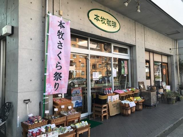 さくら祭りのぼり (2)