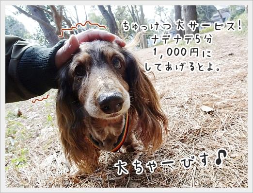 fc2_2019-02-19_04.jpg