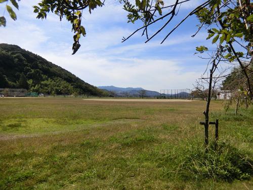 ご近所の、片渕公園です。