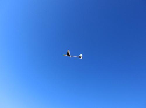 自由機、飛んでるトコ。 その4。今日のベストショット!