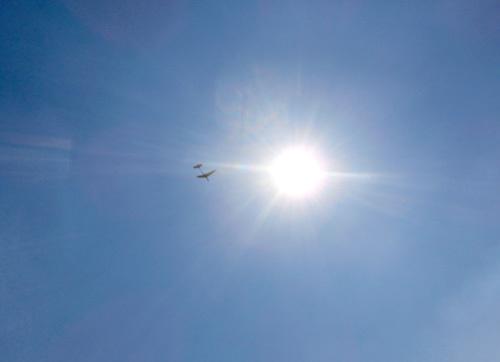 自由機、飛んでるトコ。 その1。