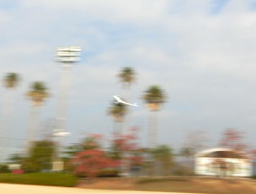 2機目の無尾翼機、飛行ちう~。 その1!